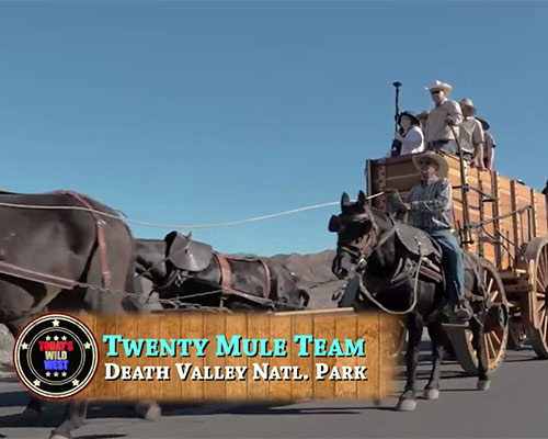 Todays Wild West Video Borax Wagons 49ers
